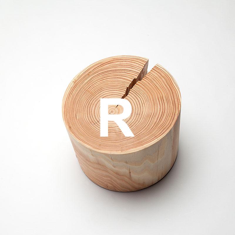 rahp6